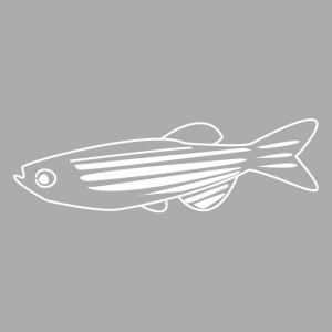 logo-IZFS