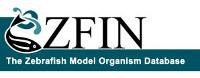 logo-ZFIN