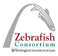 logo-zebrafish_consortium
